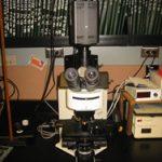 kk microscope1small